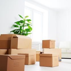 House sitting agreement agreements online moving agreement with acceptance of risk platinumwayz
